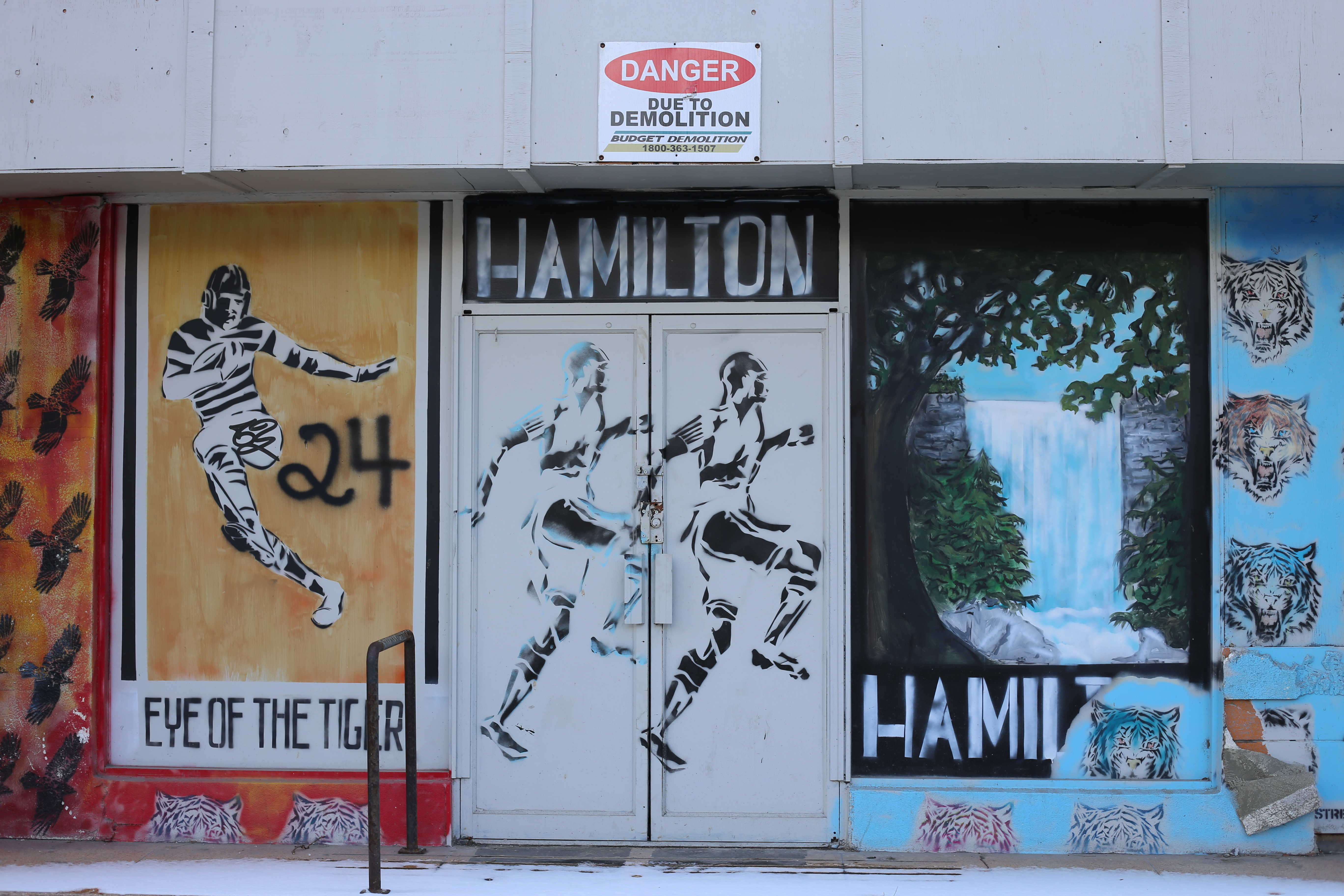 The Young Artists of (a Gentrified) Hamilton