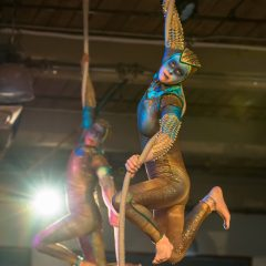 La Nuit du Vagabond tells a story of migration The Hamilton Aerial Group's sixth annual fundraising cabaret presents people on the move