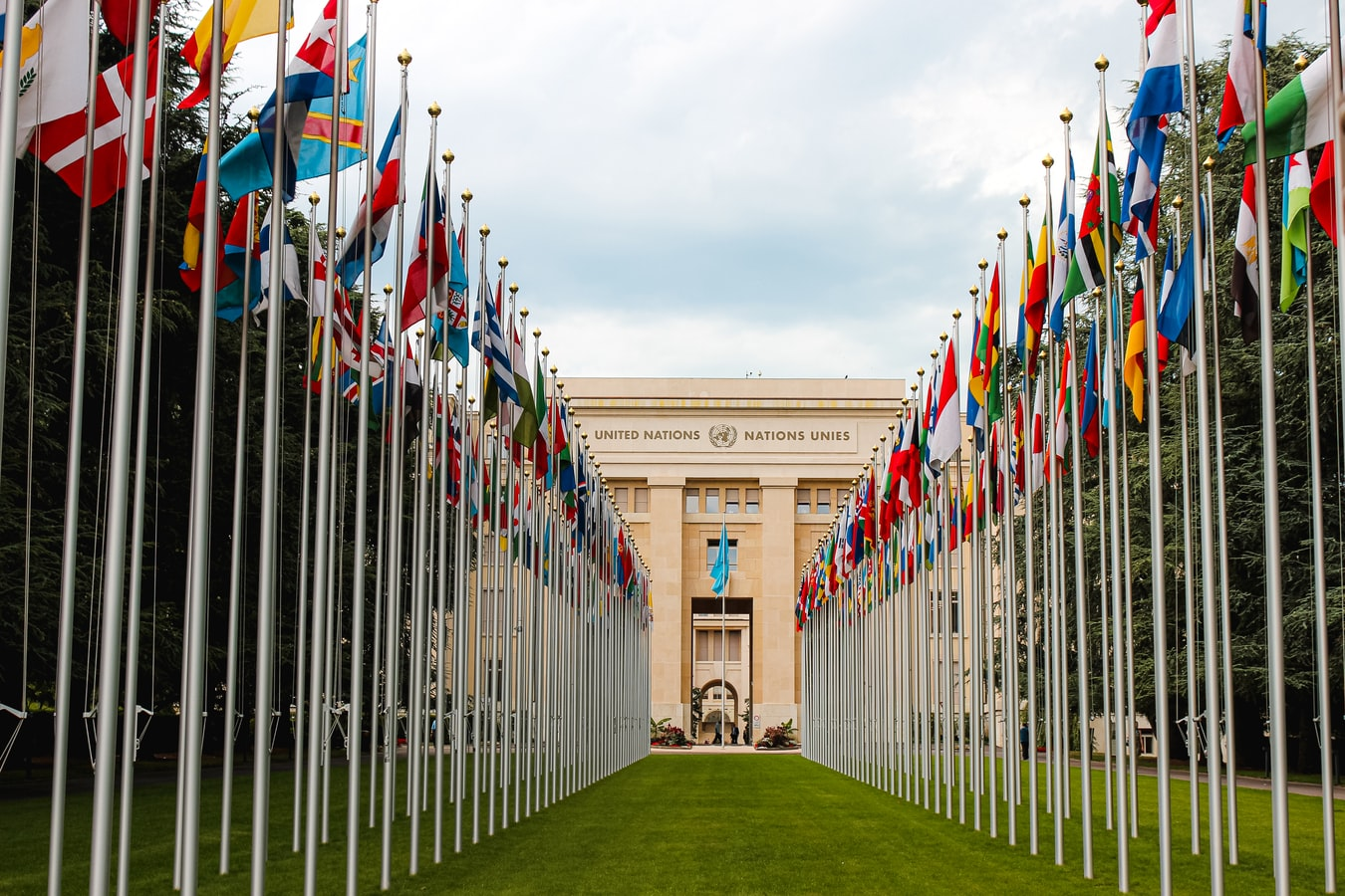 A bunch of countries' flags leading up to the United Nations.