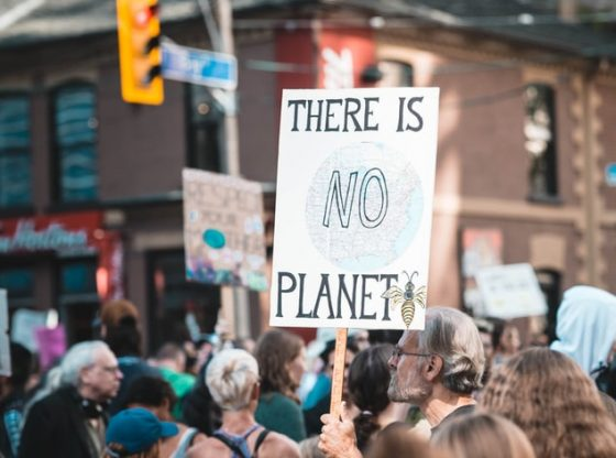 "A photo of someone holding up the sign ""There is no planet B"" with a bee drawing."